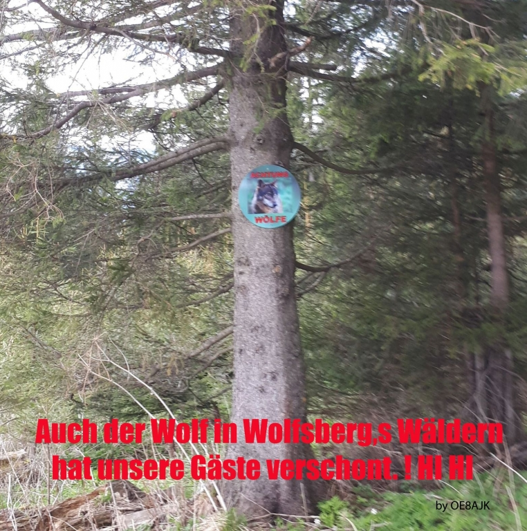 Hohenwarttreffe_2018_5